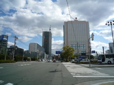 201001wakakusa-7
