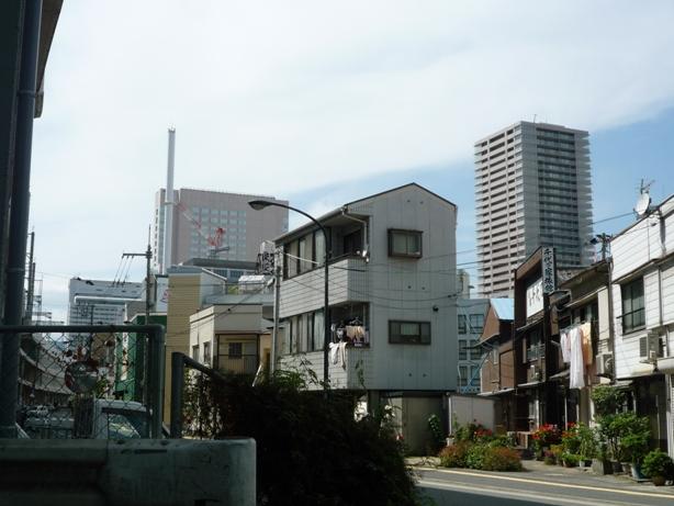 wakakusa201005-6