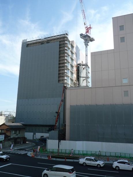 wakakusa201005-5