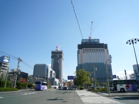 200911wakakusa-1